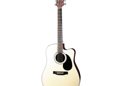 Crafter SILVER HDC-21